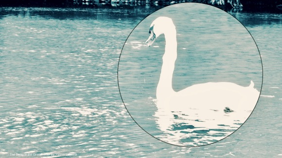 The Swan in the Grand River By Yannis Lobaina